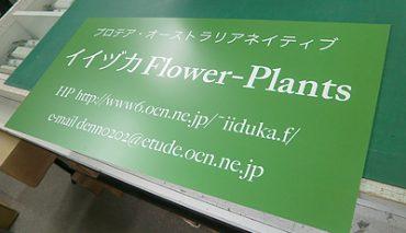 ステン調パネル看板&パネル看板(イイズカフラワー様)p-018043